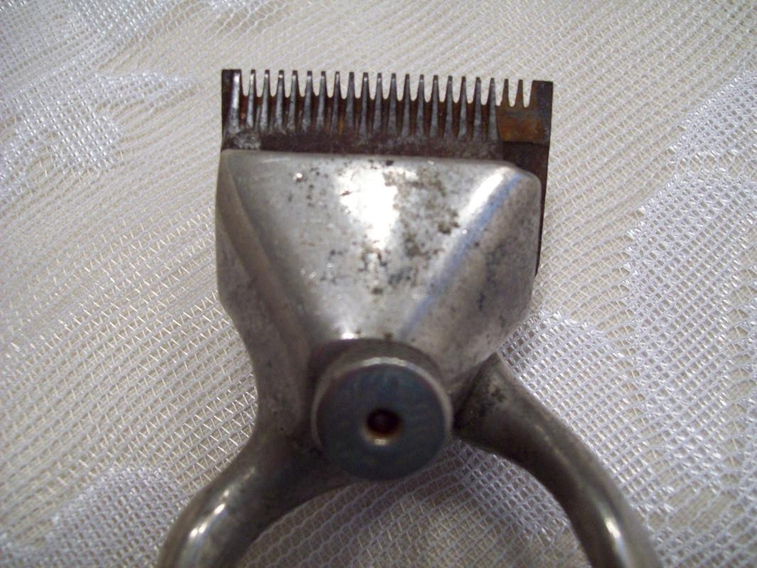 Hair Shears or Clippers