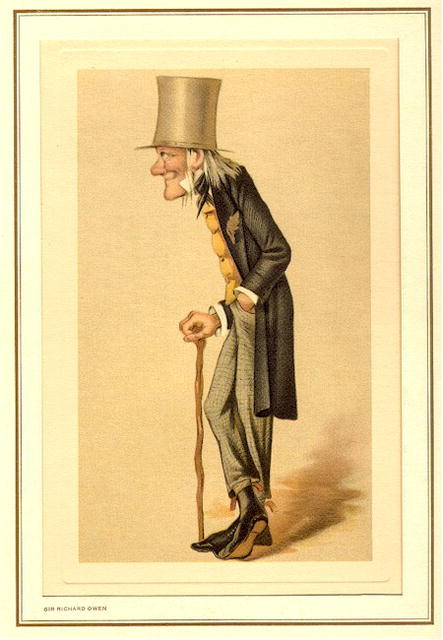19th Century Spy Caricature, Sir Richard Owen