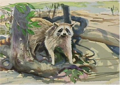 Everett Hibbard S/N Lithograph, Raccoon