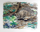 Everett Hibbard Lithograph, Adirondack Bobcat