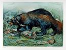 Everett Hibbard S/N Wildlife Print, Wolverine