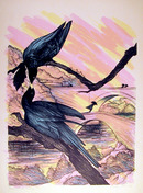 Susan Hall S/N Lithograph, Black Beauty (Bird)