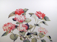S. Headley van Campen S/N Lithograph, Flowers