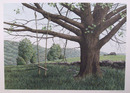 Helen Rundell S/N Lithograph, Landscape