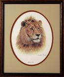 Charles Frace Framed Wildlife Print, African