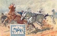 Early 1900's Postcard, Horses