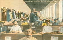 1914 Postcard, Reader In Cigar Factory, Cuba