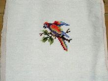 Needlepoint,  Parrot