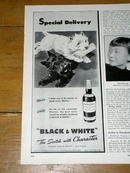 Black & White Scotch Advertisement