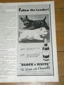 Black & White Scotch Advertisement