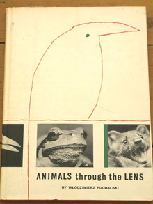 Animals Through The Lens Book