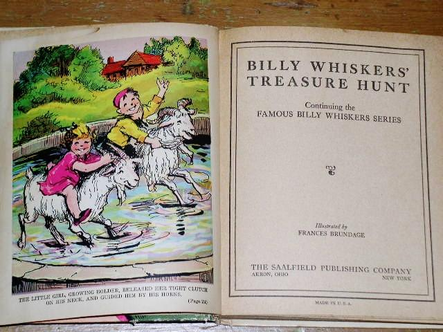 Billy Whiskers' Treasure Hunt Book