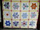 Hexagon Quilt Star  -  QLT
