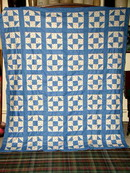 Shoo Fly Quilt Top -  QTP -