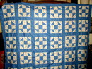 Shoo Fly Quilt Top -  QTP