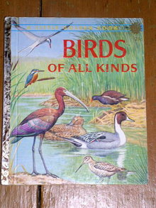 Birds of all Kinds,  Little Golden Book, First Printing