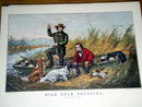 Currier & Ives -  Wild Duck Shooting