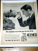 Vitalis V-7 Hair Tonic Advertisement