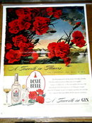 Dixie Belle Gin  Advertisement