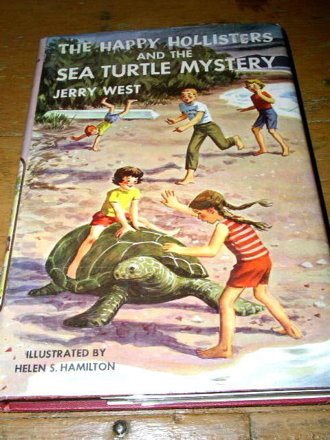 Happy Hollisters and the Sea Turtle Mystery Book