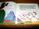 The Road Runner, A Very Scary Lesson,  Book and Child's Record