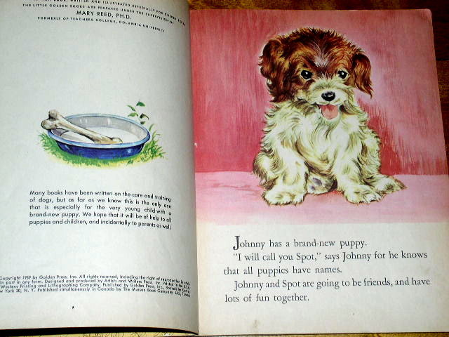 The New Puppy,  Little Golden Book