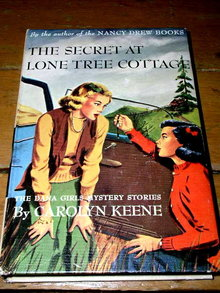 Dana Girls Book, The Secret at Lone Tree Cottage