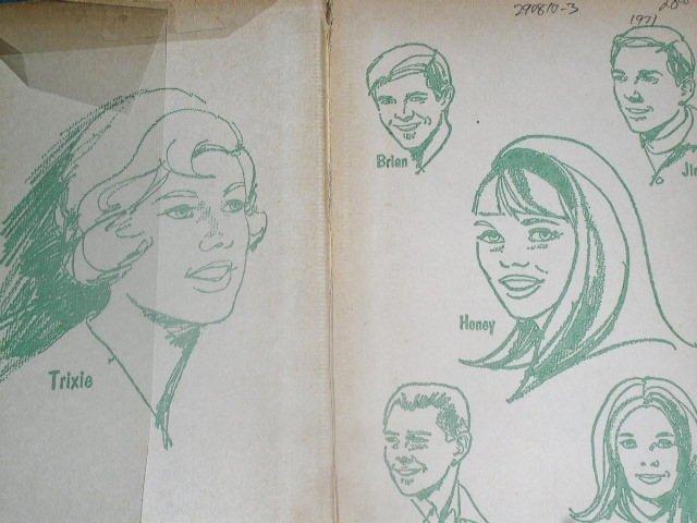 Trixie Belden, The Mystery on Cobbett's Island  Book
