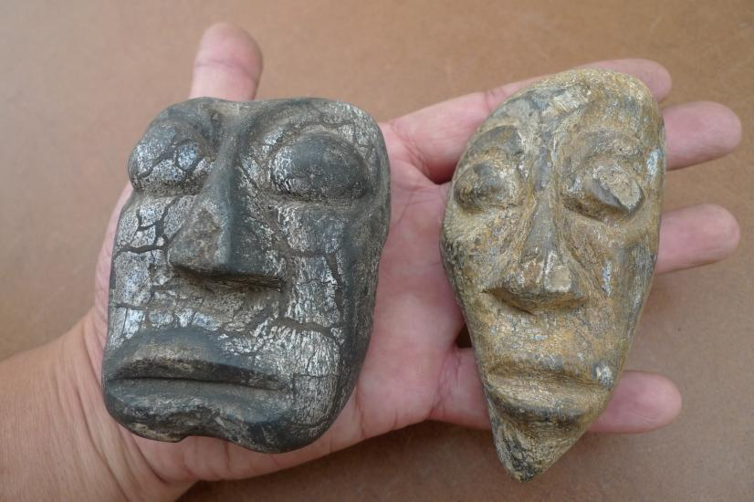FOSSILIZED WOOD 100 & 85mm PLANT FOSSILS Fossil Organic Prehistoric Plant MASK
