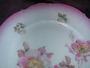 Imperial Porcelain Hand Painted, Artist Signed Plate.