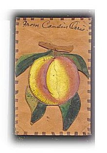 Neat Leather 1906 Peaches Greetings Postcard