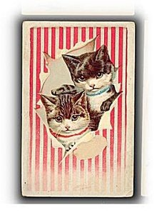 1895 Lions Coffee Cats/ Kittens Trade Card