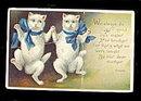 Clivette 1909 Dancing Cats Postcard - Neat