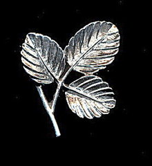 1960s Sarah Coventry 'Petite' Silvertone Leaf Pin