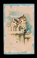 Lovely 1907 Kittens/Cats on Fence Postcard