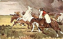 1907 Horses in a Storm, Mustangs Postcard