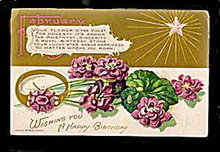 February Birthdate Flower E Nash 1907 Postcard