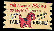 Vintage Wooden 'The Reason a DOG....' Comic Postcard