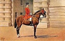 Tucks 1907 'Royal Outrider in Scarlet Livery' Postcard