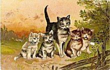 Lovely 1907 Cats & Kittens Group Postcard