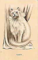 """""""Vanity"""" White Persian Cat 1913 Postcard"""