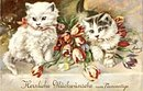 Lovely Vintage European Kitten Postcard