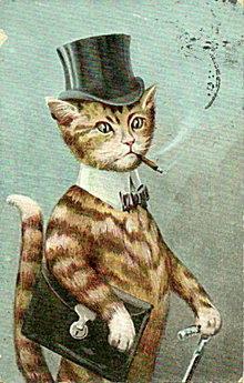 Great Dressed Cat in Suit 1908 Postcard