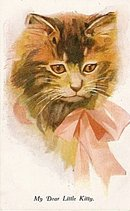 'My Dear Little Kitty Cat Head' 1907 Postcard
