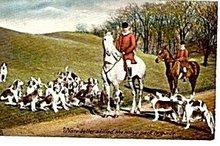 Tucks Fox Hunt with Dogs, Horses 1907 Postcard