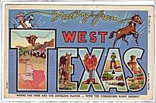 Greetings from West Texas Large Letter 1940s Postcard