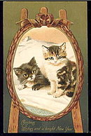 Lovely Kittens Christmas Wishes Winsch Postcard
