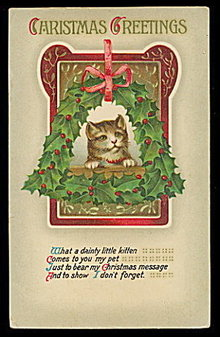 Lovely Christmas Kitten/Cat in Holly 1908 Postcard