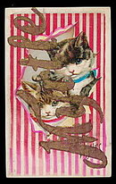 "1907 '""Myrtle"" Name with Kittens Postcard"