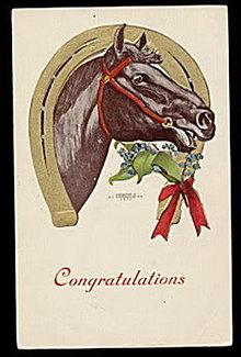 1907 H C Westerhouse Horse 'Congratulations' Postcard